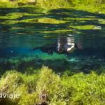 Buceo en rio da Prata
