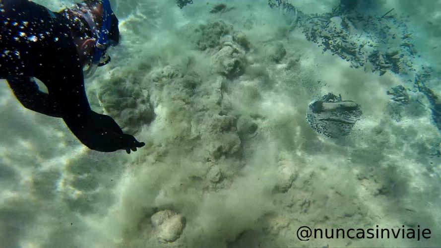 Burbujas que salen del fondo arenoso en el río Olho d'Água, en el Recanto ecológico Rio da Prata