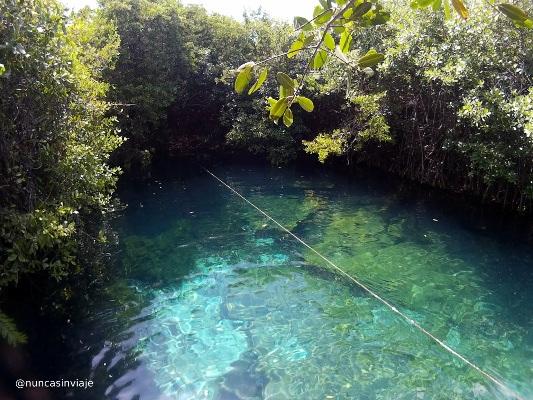 Cenotes en Riviera Maya: Xcacel Xcacelito, cerca de Tulum