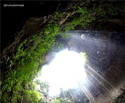 Vista del cenote Ik Kil desde abajo, en Riviera Maya