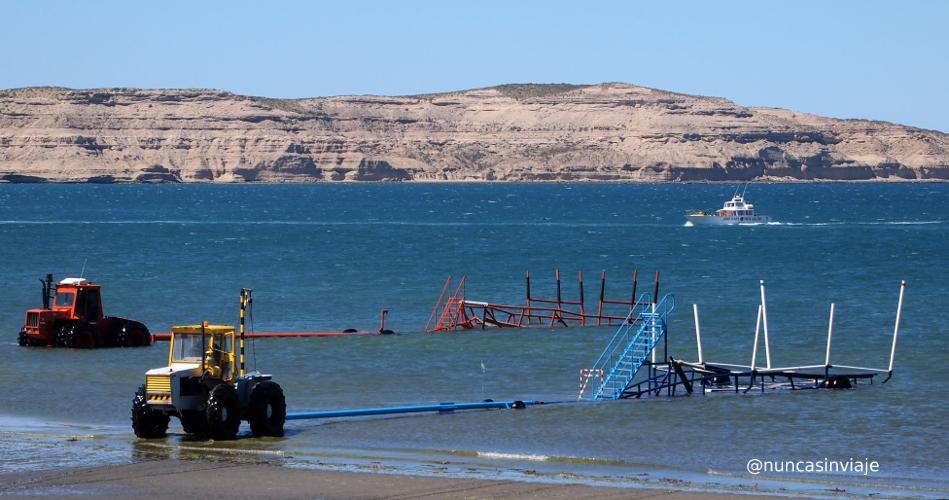 Tractores remolcadores en Puerto Pirámides