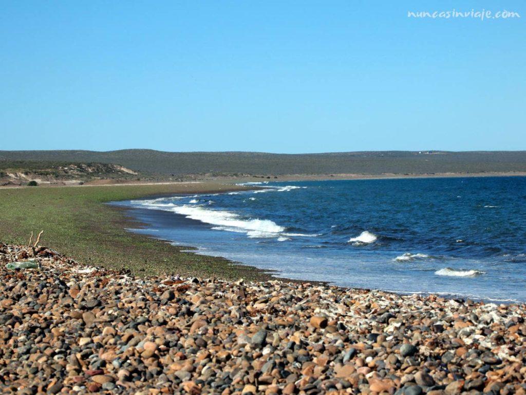 Playa para ver ballenas en Puerto Madryn