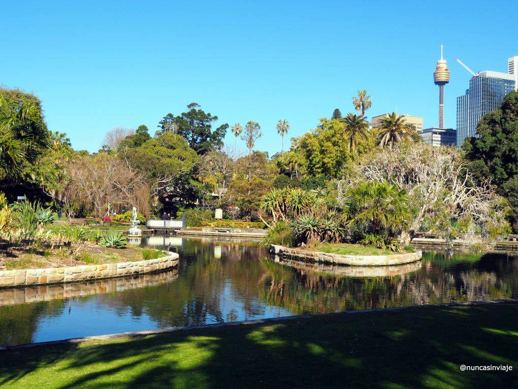 Jardín botánico de Sídney