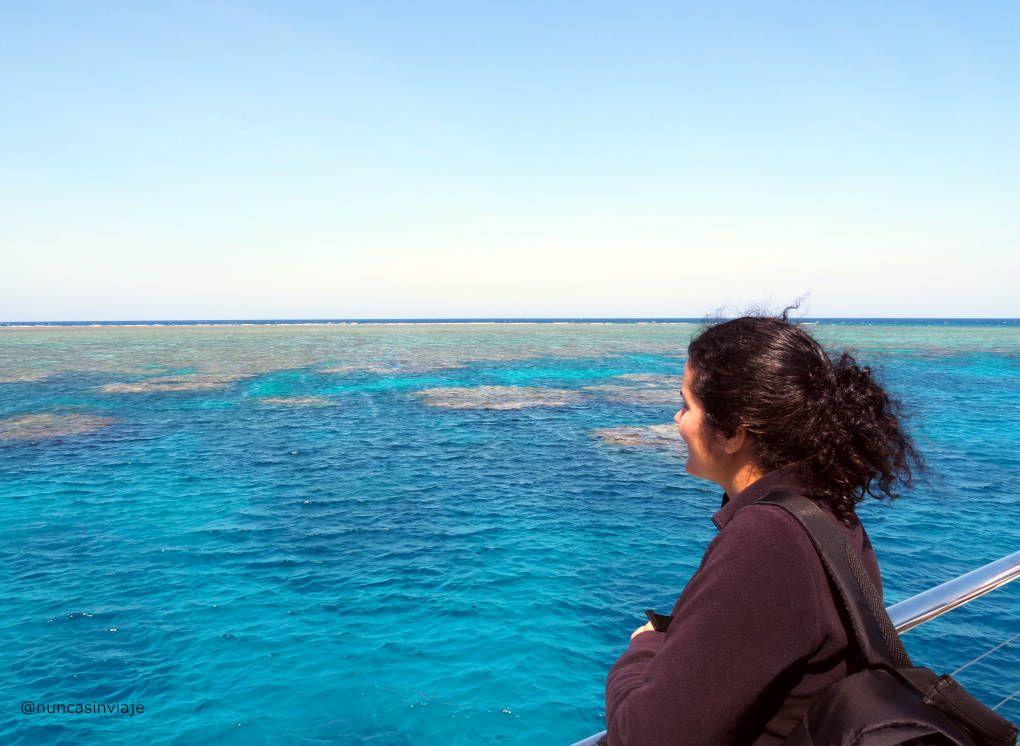 arrecife de coral australia