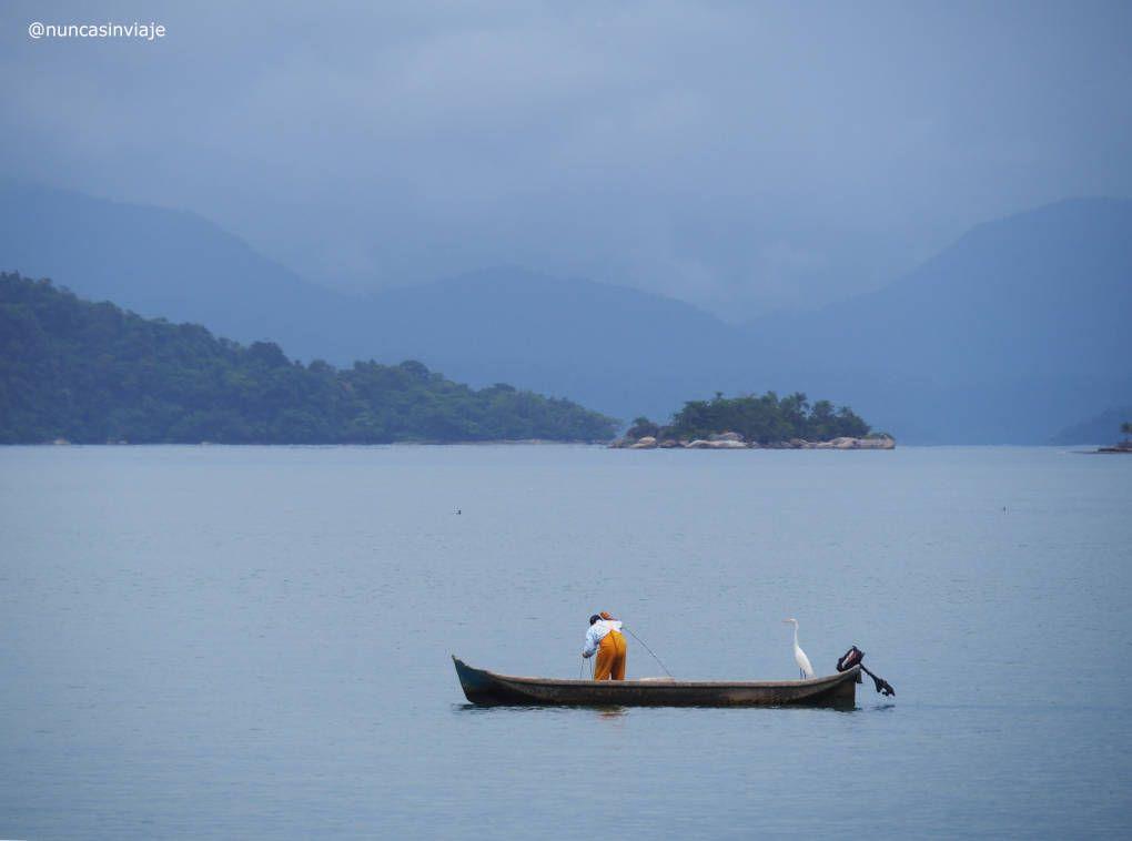 Un pescador y una garza