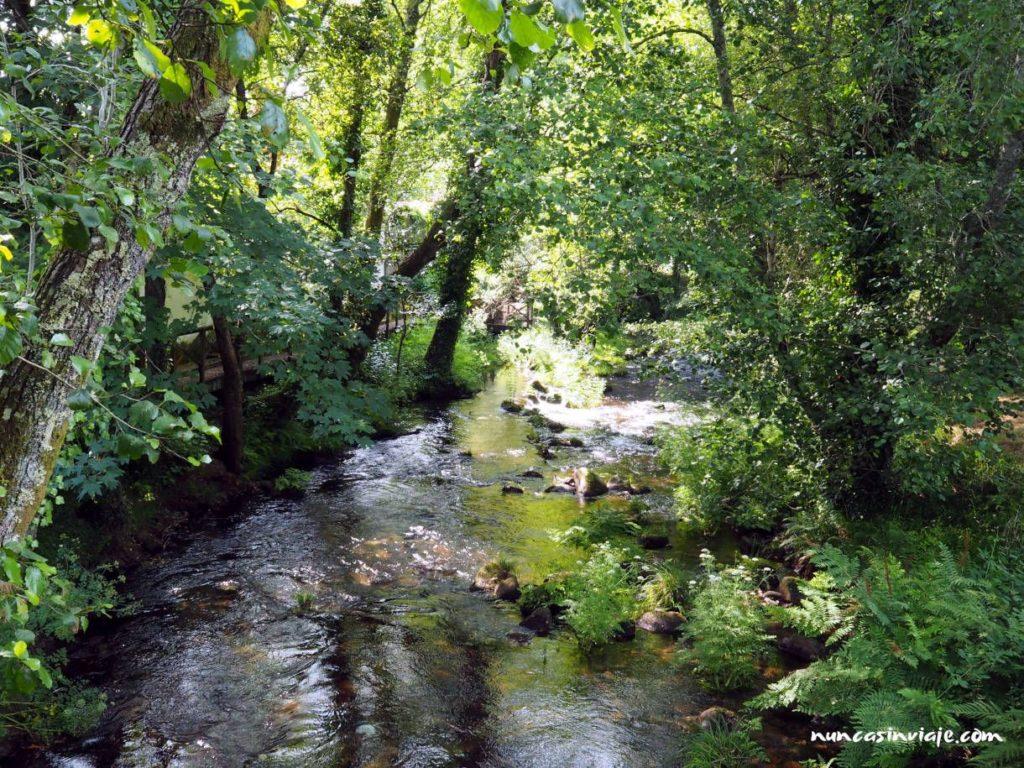 Sendero fluvial del río Tea
