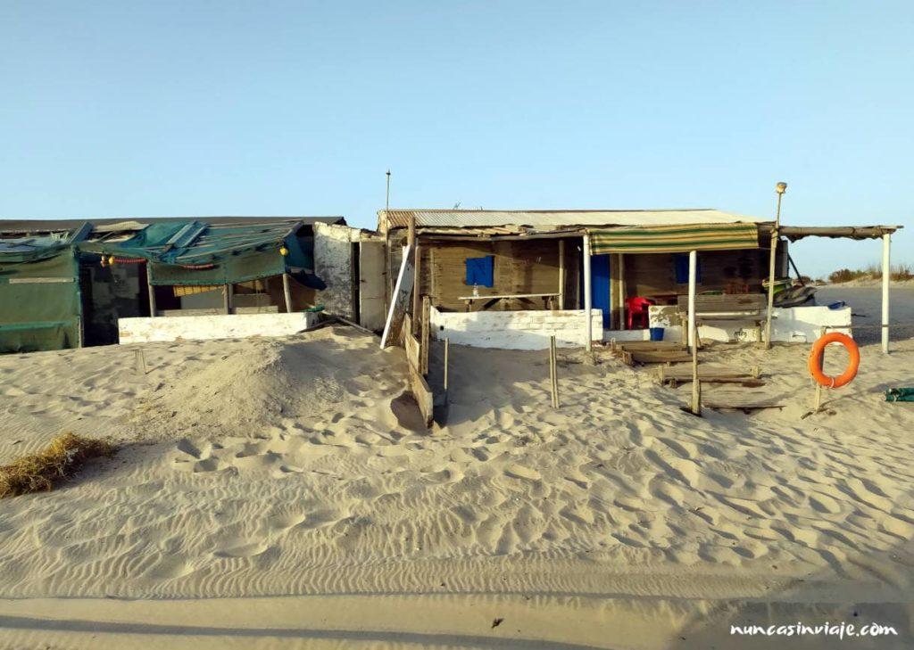 Chabolas en la playa de Castilla de Doñana