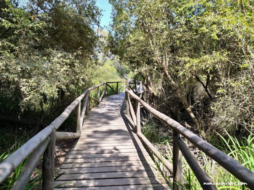 Senderos de Doñana