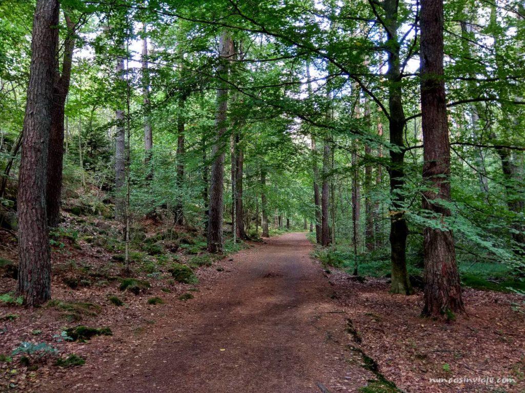 Reserva natural de Gotemburgo