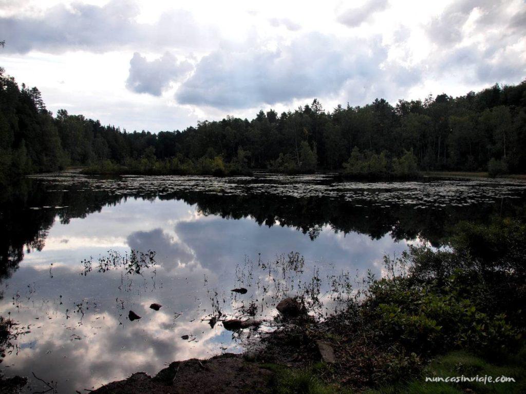 Qué ver en Gotemburgo: naturaleza