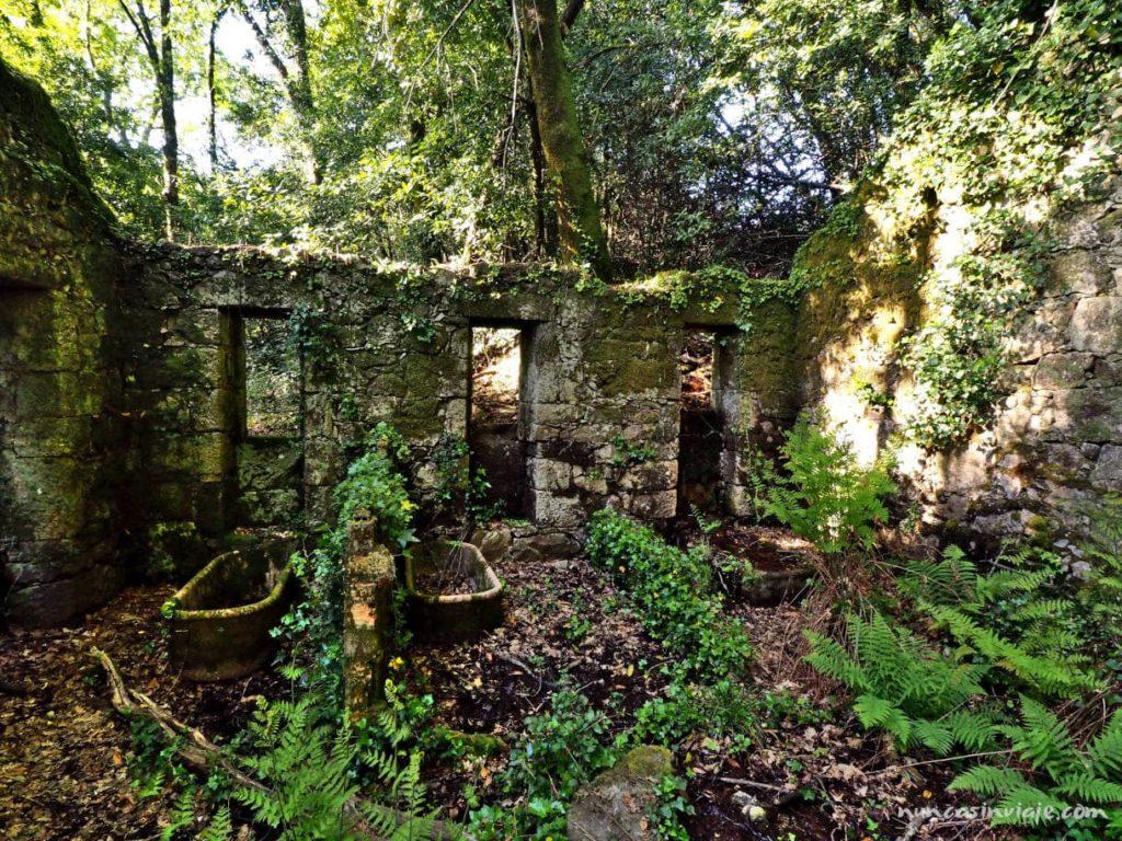 Bañeras del antiguo balneario