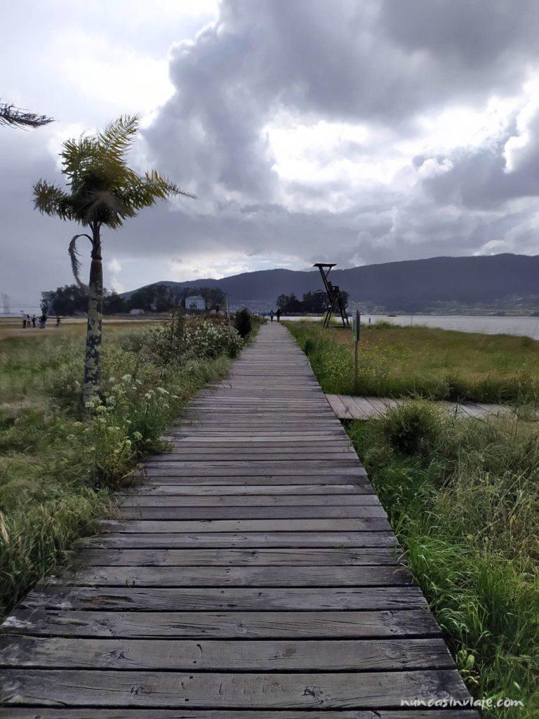 Dunas en la playa de Cesantes